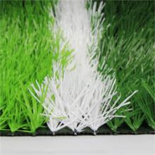 Artificial Grass Pe502017ed-66 67