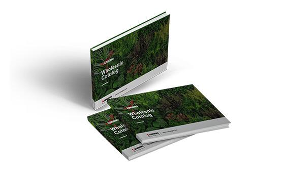 Artificial Green Wall Brochures