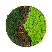Moss Frame Art