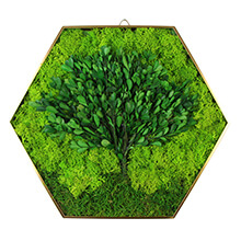 Moss Picture Frame DIY