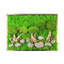 Moss Wall Art Photo Frame