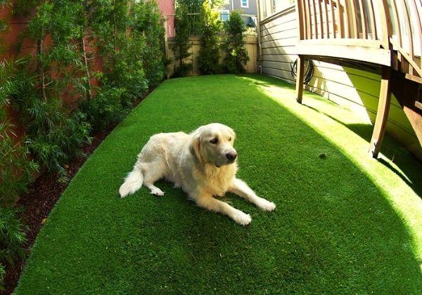 pet friendly artificial landscape grass