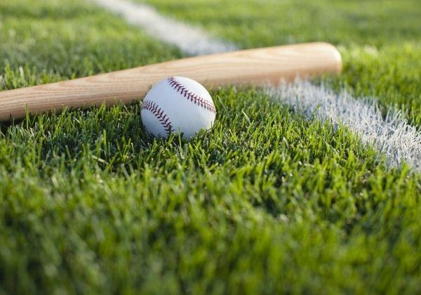 artificial baseball grass