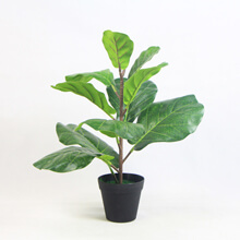 Artificial Qin Yerong Plants With Pots G0802PZ033