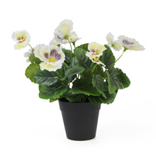 Fake Pansy plants in pots G0802PZ035white
