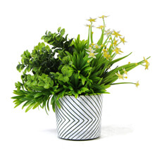 Small Artificial Plants with pots PZ068
