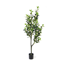 Artifiical Camellia japonica Plants