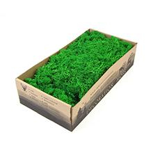 Preserved Reindeer Mosss
