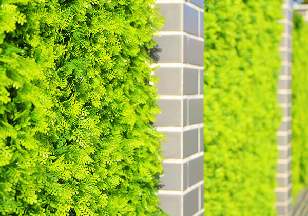 artificial hedges wall