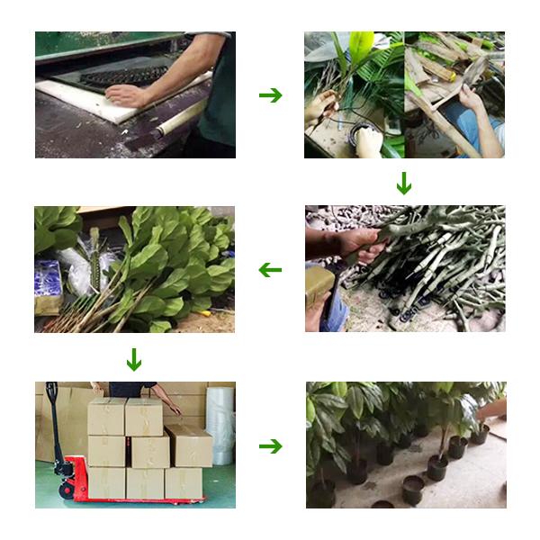 Artificial Potted Plants Supplier produce Progress