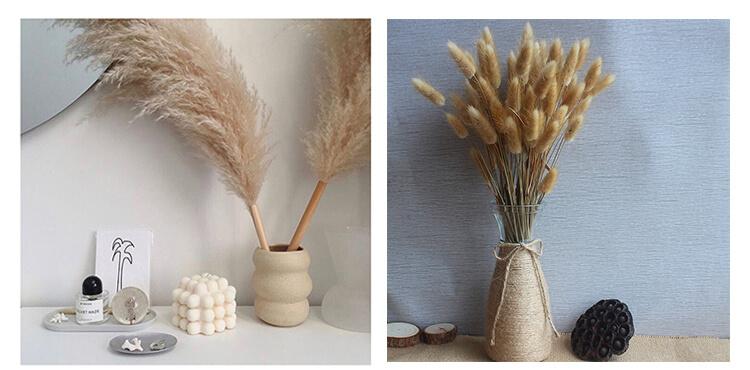 Pampas Grass Decor Ideas Complete Guide
